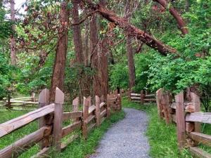 Vesper Point Trail