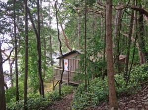 Miss Moore's Cabin, Moorecroft