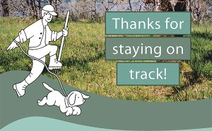 Thanks for staying on track